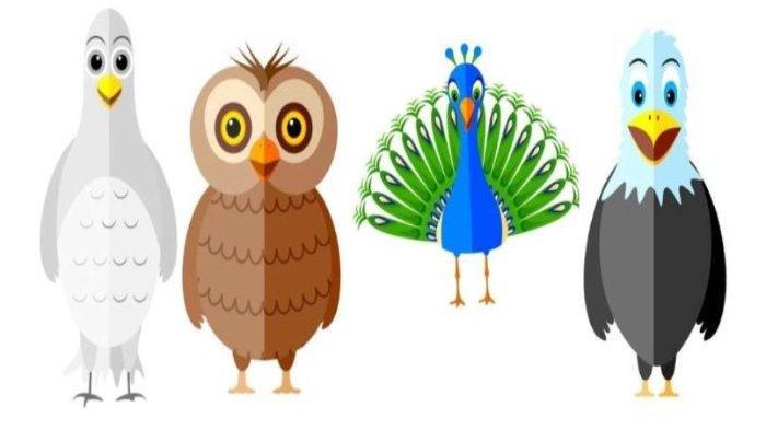 TES Kepribadian - Pilihlah Burung yang Paling Menarik, Jawabanmu Ungkap Sisi Positif dan Negatifmu