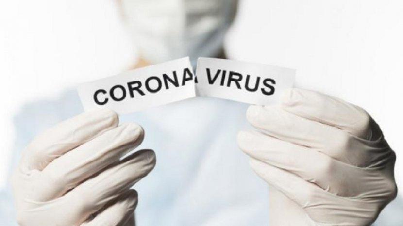 freepic-ilustrasi-virus-corona-tribunlombok.jpg