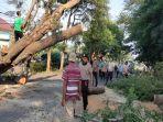 personel-satuan-sabhara-polres-lombok-tengah-membersihkan-batang-pohon-tumbang.jpg