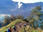 survei-jalur-pendakian-gunung-rinjani.jpg