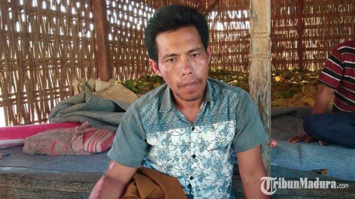 Cerita Korban Kerusuhan Wamena asal Pamekasan, Lihat Massa Tiba-Tiba Tebang Pohon dan Bakar Bangunan
