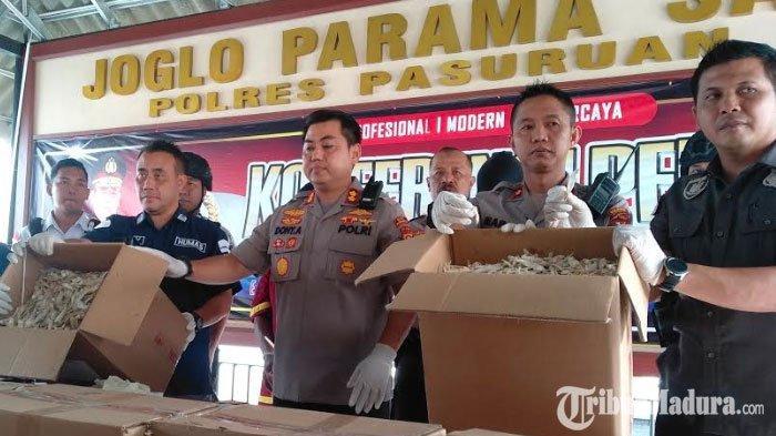 Ikan Asin Formalin Produksi Penjual Nakal di Pasuruan Didistribusikan hingga ke Jawa Tengah