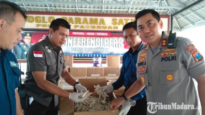 Penjual Ikan Asin Berformalin di Pasuruan Pakai Setengah Kg Formalinuntuk Awetkan2 Ton Ikan Bilis