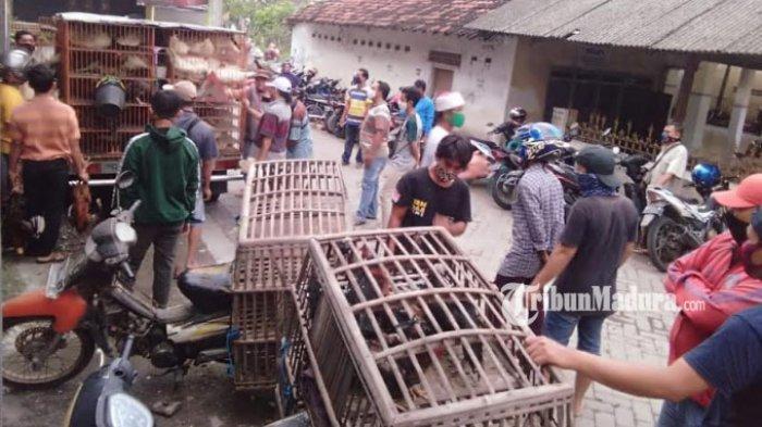 4 Pedagang Ayam Pasar Sidowungu Gresik Positif Corona, Punya Riwayat Kontak dengan Pasien Covid-19