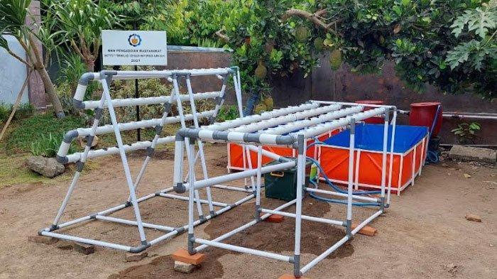 Mahasiswa Sulap Air Bekas Wudhu di Pondok Pesantren Menjadi Budidaya Perikanan dan Hidroponik