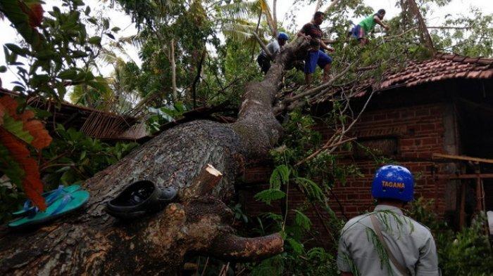 Hujan Deras Angin Puting Beliung Hajar 2 Kecamatan di Trenggalek, Puluhan Rumah Warga Porak-poranda