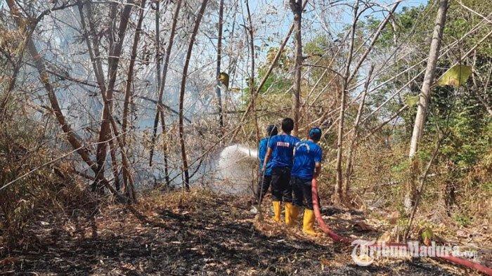 Lahan Gambut di Sampang Madura Terbakar, Api Diduga Berasal dari Sisa Pembakaran Sampah Pemiliknya