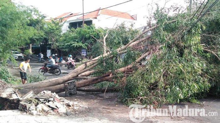 BREAKING NEWS - Bangkalan Kembali Diterjang Angin Puting Beliung, Giliran Wilayah Kota jadi Sasaran