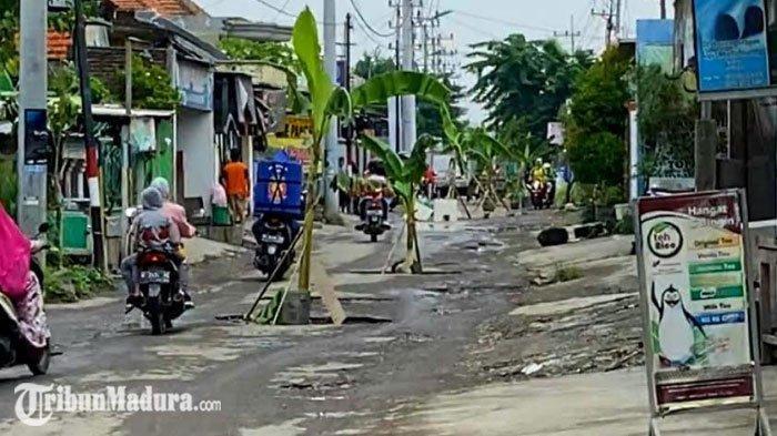 Jalan Berlubang di Sidoarjo Disulap Jadi 'Kebun Pisang', Bentuk Protes Juga Cegah Kecelakaan
