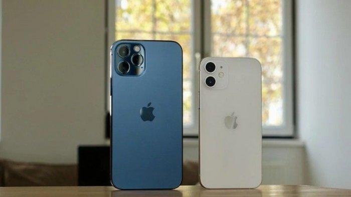 Cek Harga dan Spesifikasi iPhone Bulan Juli 2021, iPhone 11, iPhone SE, iPhone Xr Hingga iPhone 12