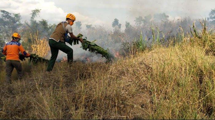 Kebakaran dan Angin Kencang Dominasi Kejadian Bencana Alam di Kota Batu pada September 2020