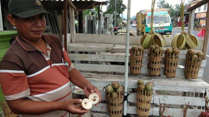 Punya Banyak Manfaat, Buah Manecu Diminati Warga, Berkah bagi Pedagang Buah Dadakan di Lumajang