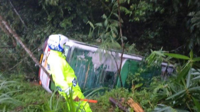 Bus Akas di Lumajang Masuk Jurang Sedalam 20 Meter, Berawal dari Sopir Hendak Nyalip, 5 Orang Luka