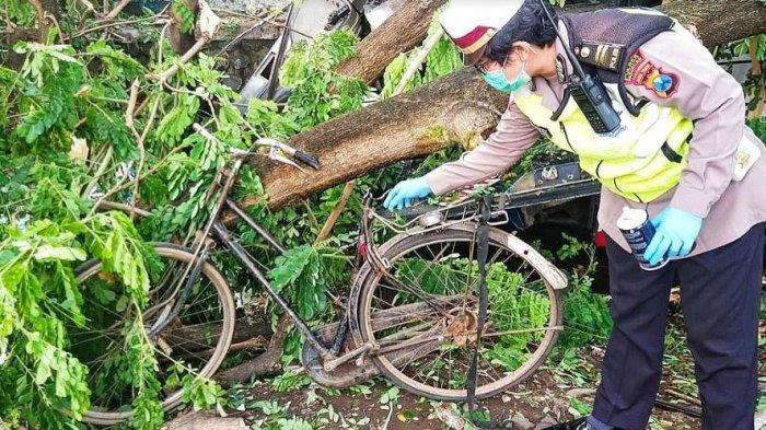 Bus Tentrem dan sepeda angin terlibat kecelakaan maut di Jalan Raya Malang - Pasuruan, Desa Pakijangan, Kecamatan Wonorejo, Kabupaten Pasuruan, Sabtu (28/11/2020).