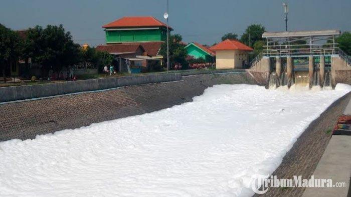 GEGER Fenomena 'Salju' di Aliran SungaiDesa SumputSidoarjo, Semakin Siang Semakin Banyak Jumlahnya