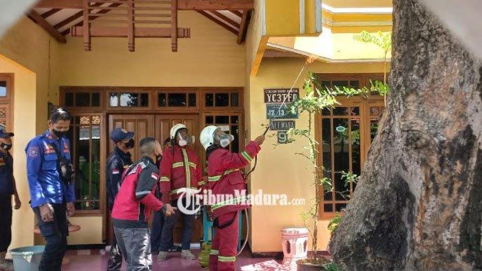 Petugas Damkar Kota Probolinggo Musnahkan Sarang Tawon Vespa di Rumah Warga