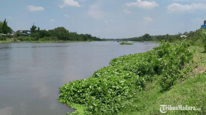 Tercatat 17 titik Tanggul Rawan Longsor di Sepanjang Daerah Aliran Sungai (DAS) Brantas