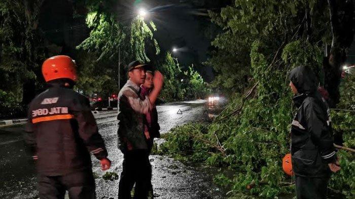 Wakil Gubernur Emil Dardak Tinjau Langsung ke Lokasi Pohon Tumbang di Jalan Ahmad Yani Surabaya
