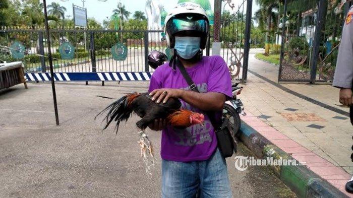 Pulang Beli Ayam Aduan, Erfan Kaget Diberhentikan Polisi, 1 Kesalahan Penting Berbuah Sanksi Sosial
