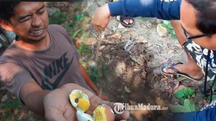 Warga Jombang Heboh, Tanah Mengeluarkan Asap dan Aroma Menyengat, Telur Mentah Bisa Jadi Matang