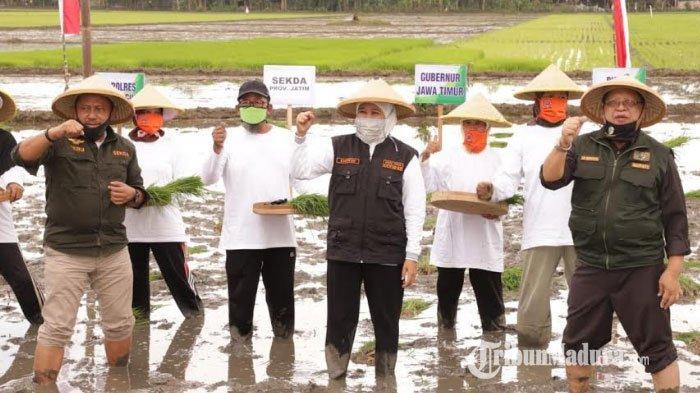 Antisipasi Krisis Pangan saat Pandemi Corona, Khofifah dengan Petani Tulungagung Percepat Tanam Padi