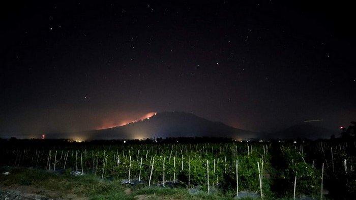 Gunung Raung Terbakar, 7 Pendaki WNA Singapura Terjebak saat Lagi Muncak: juga 6 WNI
