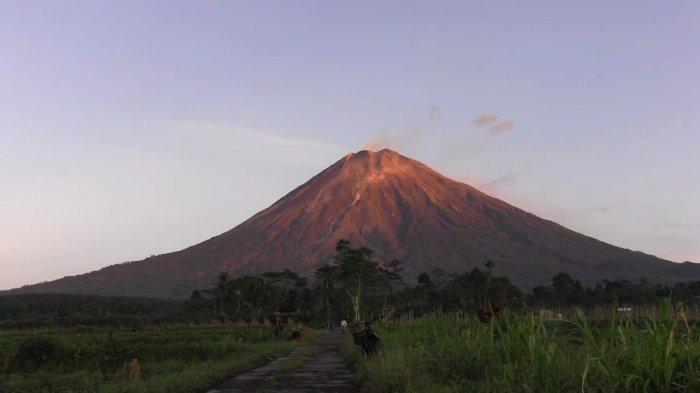 Gunung Semeru Kembali Luapkan Guguran Lava Sejauh 2 KM, BPBD Lumajang Ingatkan Ini