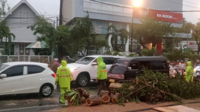 BREAKING NEWS - Hujan Deras dan Angin Kencang Terjang Surabaya, Pohon Tumbang Timpa Mobil Pengendara
