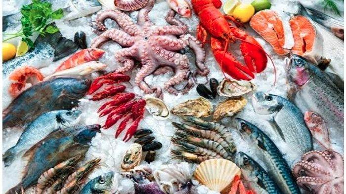 Berikut Daftar Ikan Dengan Kandungan Merkuri Tinggi, Sangat Berbahaya Bagi Otak Bila Dikonsumsi