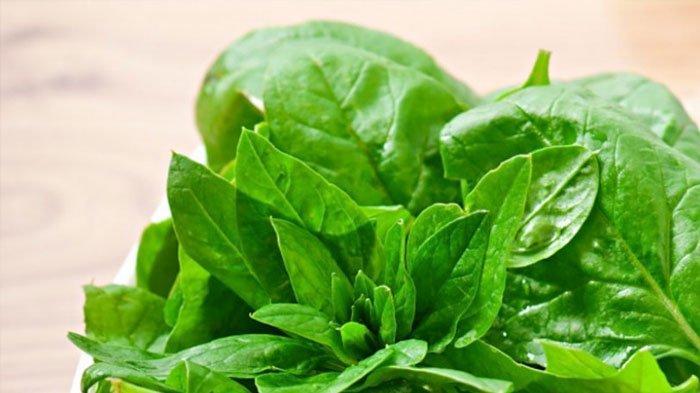 Tak Hanya dari Susu, Simak 5 Jenis Makanan yang Mengandung Kalsium, Baik untuk Asupan Gizi Tubuh