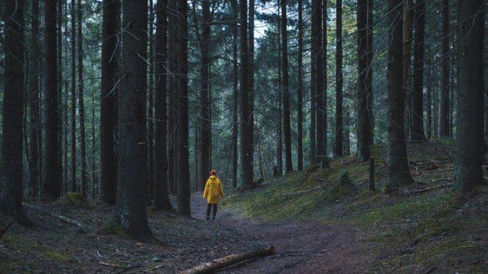 MIRIS Nasib Gadis setelah Bunuh Bapak-bapak yang akan Memerkosanya di Hutan, Mayat Si Pria Telungkup
