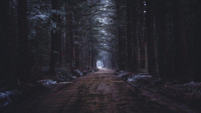 ANEH Mobil Tersesat di Hutan Gunung 3 Jam saat Jumat, Sopir Lihat Jalan Jadi Jurang, Kadus:Istighfar