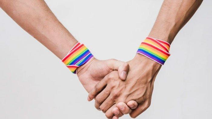 TERUNGKAP, Kelompok LGBT di Tubuh TNI dan Polri, Mantan Jenderal Ungkap Fenomena dan Penyebab - Tribun Madura