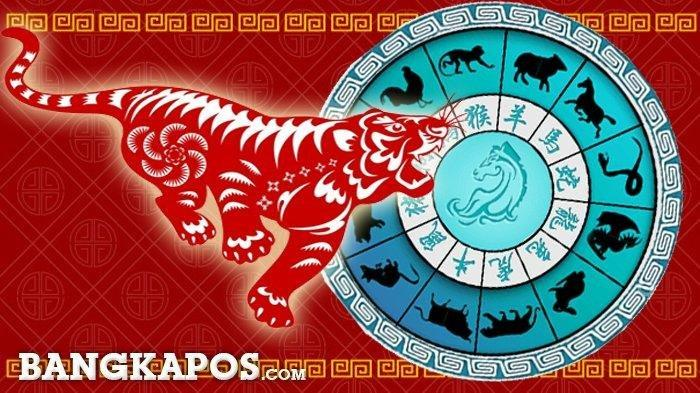 Keberuntungan Besar Datang! Ramalan 12 Shio Rabu 12 Mei 2021: Shio Naga Tenang, Shio Kambing Bahagia