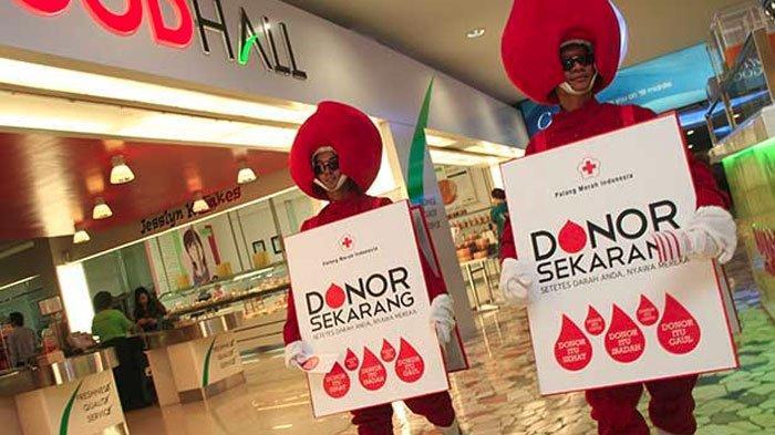 Ternyata, Satu Orang yang Donor Darah Bisa Selamatkan Tiga Orang Lho, Berikut Penjelasan Dokter