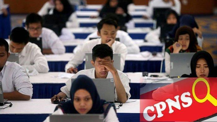 PENDAFTARAN CPNS 2019 dan PPPK 2019, Cek Formasi, Login Melalui Link Resmi sscasn.bkn.go.id