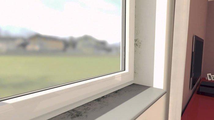 Istri Tergesa Datangi Rumah Kost Suami, Histeris Lihat Isi Kamar saat Mengintip dari Balik Jendela