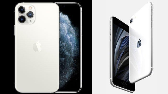 Harga iPhone Terkini di Akhir Bulan Juni 2020, Mulai iPhone 7, iPhone 8, iPhone SE dan iPhone 11