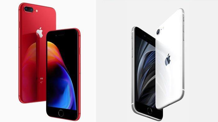 Rincian Harga iPhone 7, iPhone 8, iPhone X, iPhone 11 Hingga Spesfikasi dari iPhone SE