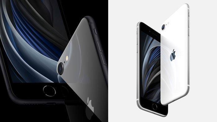 Spesifikasi dan Keunggulan iPhone SE Serta Daftar Harga iPhone Pada April 2020, Simak Selengkapnya
