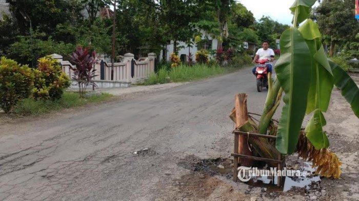 Jalan berpohon pisang di Desa Wonoasri Kecamatan Tempurejo, Jember, Senin (18/1/2021).
