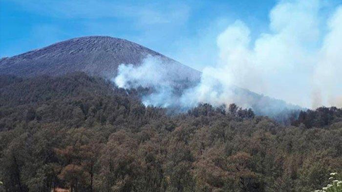 6 Hektar Hutan di Gunung Semeru Terbakar, Pendakian ke Puncak Mahameru Dibatasi Sampai Ranu Kumbolo