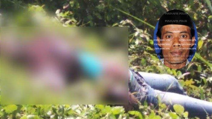 Terungkap Sudah Sosok Mayat di Semak Belukar JLS Tulungagung, Pernah Jualan Bakso di Madura