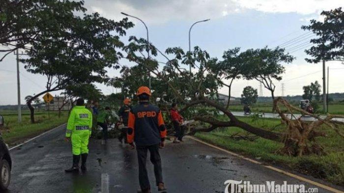 Prakiraan Cuaca di Jawa Timur: Hujan Lebat Disertai Petir dan Angin Kencang Terjadi Sepekan ke Depan