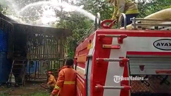 Baru Diisi Anakan Ayam, Kandang Milik Warga Trenggalek Terbakar, Api dari Penyimpanan Tabung Gas