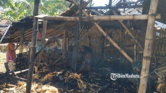 Kandang Ternak Warga Sumenep ini Terbakar, Pemilik Merugi 2 Kali Karena Sepasang Sapinya Alami Luka