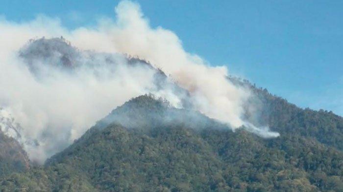 Pemprov JatimBakal Ajukan Adanya Helikopter untuk Water Bombing Kebakaran Hutan diGunung Ijen