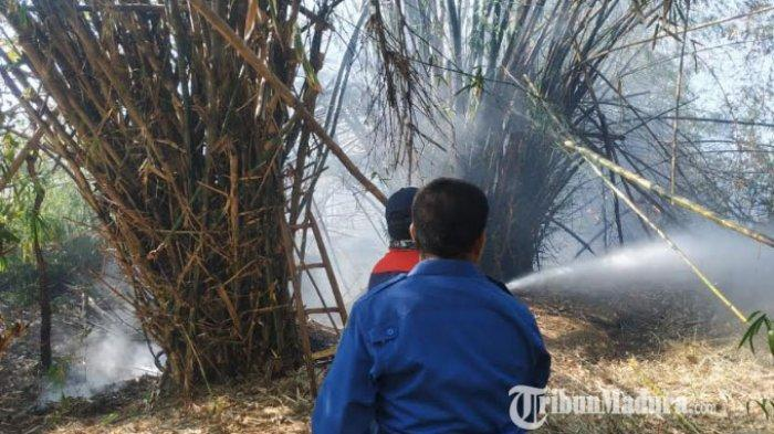 Dalam Sehari, Dua Lahan Gambut dan Bambu di Desa Kaso'an Kecamatan Sampang Madura Terbakar