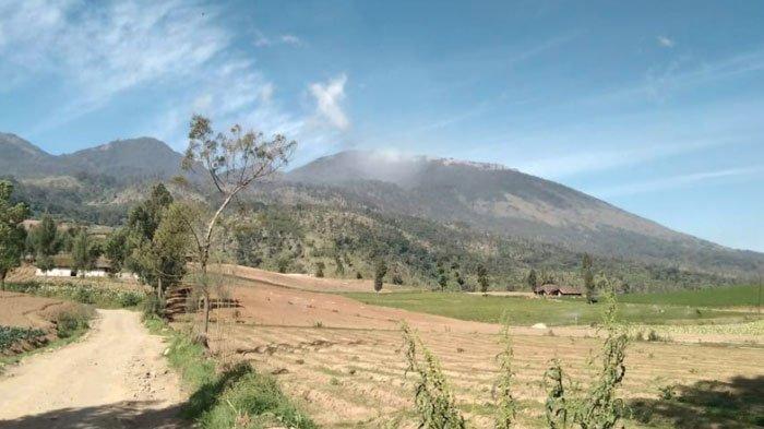 Status Tanggap Darurat Kebakaran Hutan di Gunung Arjuno Resmi Dicabut, Turun Menjadi Siaga Darurat