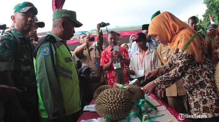 Gubernur Jatim Khofifah Indar Parawansa Optimistis Durian Ngantang Mampu Tembus Pasar Ekspor